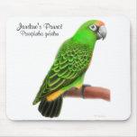 Jardine's Parrot Mousepad