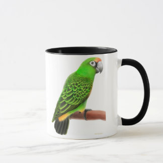 Jardines Parrot Mug