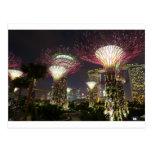 Jardines por la arboleda de Singapur Supertree de  Tarjeta Postal