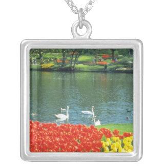 Jardines rojos de Keukenhof, flores de Holanda Grimpolas Personalizadas