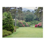 Jardines rojos de la casa de Muckross, flores de I Tarjetas Postales