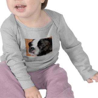 Jarno Boston Terrier Hybrid Photo-10 T-shirts