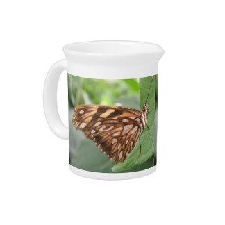 Jarra bonita de la mariposa de Brown