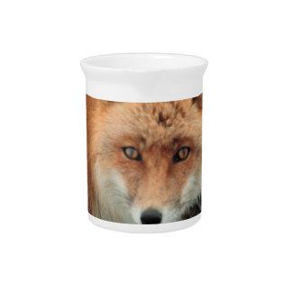 Jarra de la especie del Fox