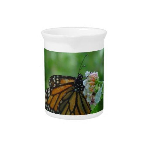 Jarra de la porcelana de la mariposa de monarca qu