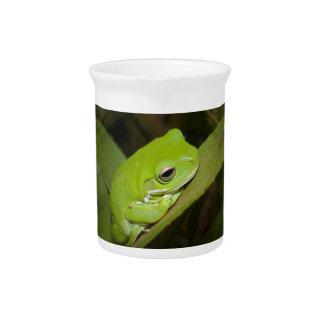 Jarra de las reflexiones de la rana