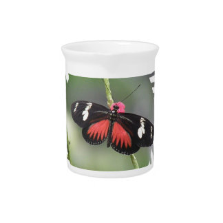 Jarra del diseño de la foto de la mariposa