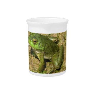 Jarra del diseño de la rana