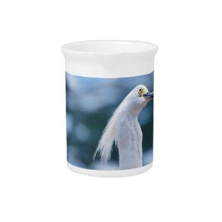 Jarra del Egret