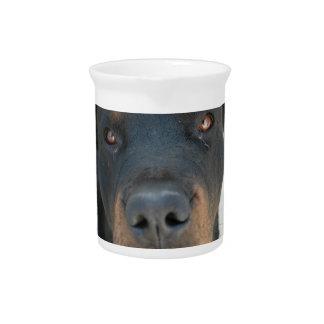 Jarra del perro de Rottweiler
