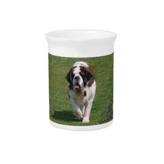 Jarra hermosa de la foto del perro de St Bernard,
