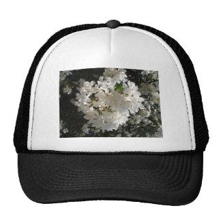 Jasmine Blossom Hats