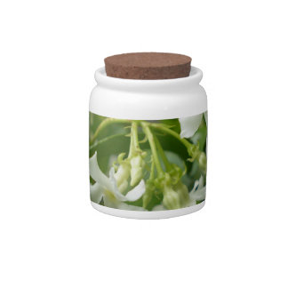 Jasmine Candy Jar