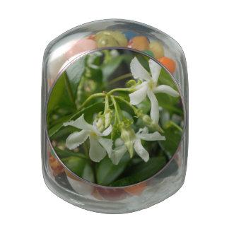 Jasmine Glass Jars