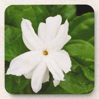 Jasmine Flower Drink Coasters