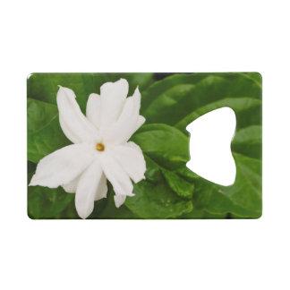 Jasmine Flower Credit Card Bottle Opener