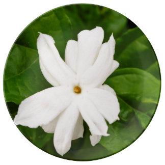 Jasmine Flower Porcelain Plate