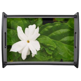 Jasmine Flower Service Tray