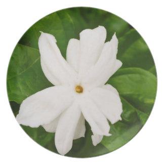 Jasmine Flower Party Plates