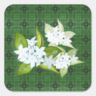 Jasmine flowers customizable name square sticker