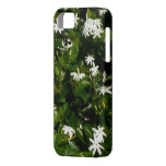 Jasmine Flowers iPhone SE/5/5s Case