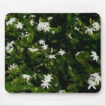 Jasmine Flowers Mouse Pad
