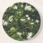 Jasmine Flowers Sandstone Coaster