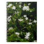 Jasmine Flowers Spiral Notebook