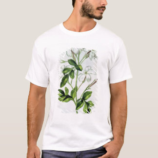 Jasmine, from 'La Guirlande de Julie' T-Shirt
