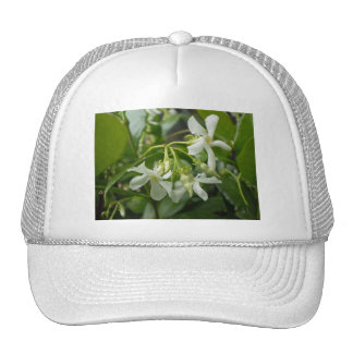 Jasmine Trucker Hat