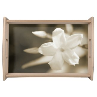 Jasmine in Sepia Serving Trays