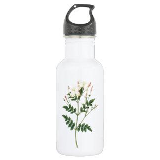 jasmine(Jasminum grandiflorum) by Redouté Stainless Steel Water Bottle