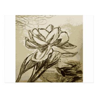 Jasmine.jpeg Postcard