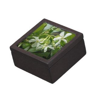 Jasmine Premium Jewelry Box