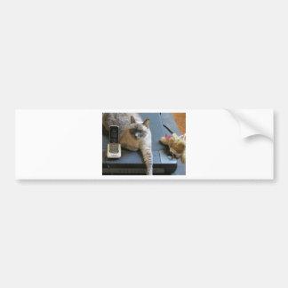 Jasmine the Siamese Cat takes care of business Bumper Sticker