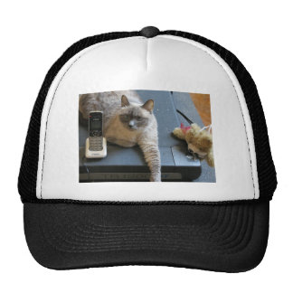 Jasmine the Siamese Cat takes care of business Mesh Hat