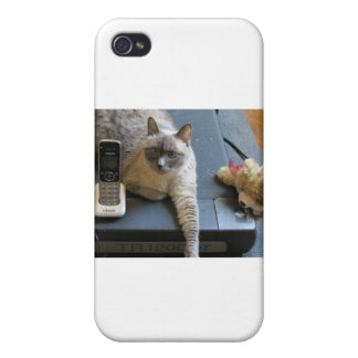 Jasmine the Siamese Cat takes care of business Case For iPhone 4
