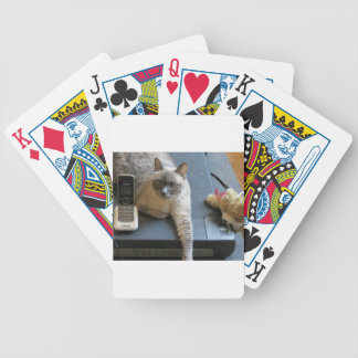 Jasmine the Siamese Cat takes care of business Bicycle Card Decks