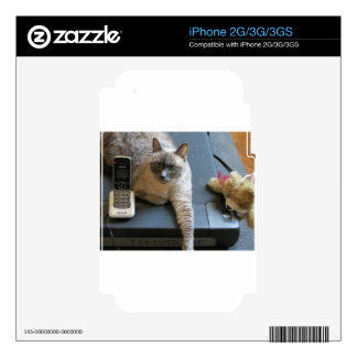 Jasmine the Siamese Cat takes care of business Skin For The iPhone 3GS