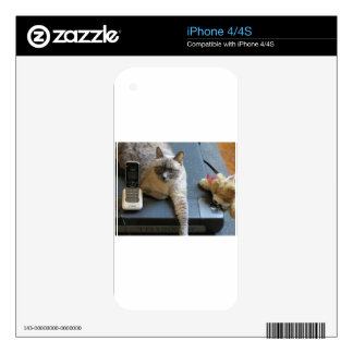 Jasmine the Siamese Cat takes care of business Decals For iPhone 4S