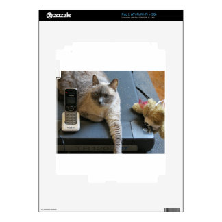 Jasmine the Siamese Cat takes care of business iPad 2 Skins