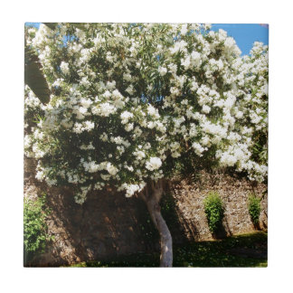 Jasmine Tree In Bloom Ceramic Tile