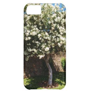 Jasmine Tree In Bloom iPhone 5C Cases