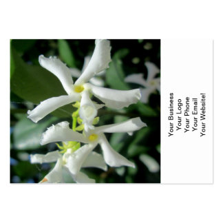 Jasmine White Tubes Flower Large Business Cards (Pack Of 100)