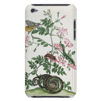 Jasmine: with snake, moth, caterpiller and chrysal barely there iPod cover