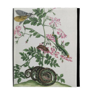 Jasmine: with snake, moth, caterpiller and chrysal iPad folio covers
