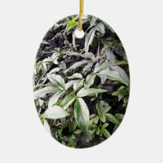Jasminum meznyi ceramic ornament