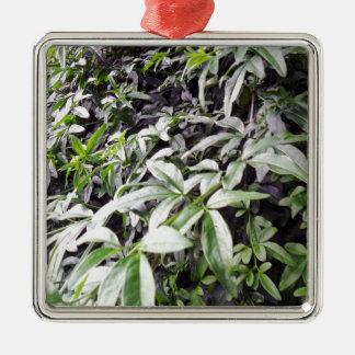 Jasminum meznyi metal ornament