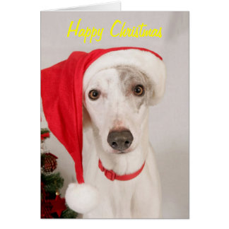 Jaspe que el navidad persigue tarjeta de felicitación