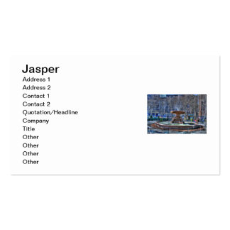 Jasper Arnone Double-Sided Standard Business Cards (Pack Of 100)